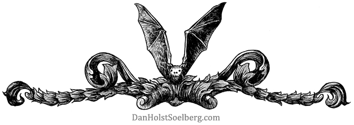 Dan Holst Soelberg header graphic